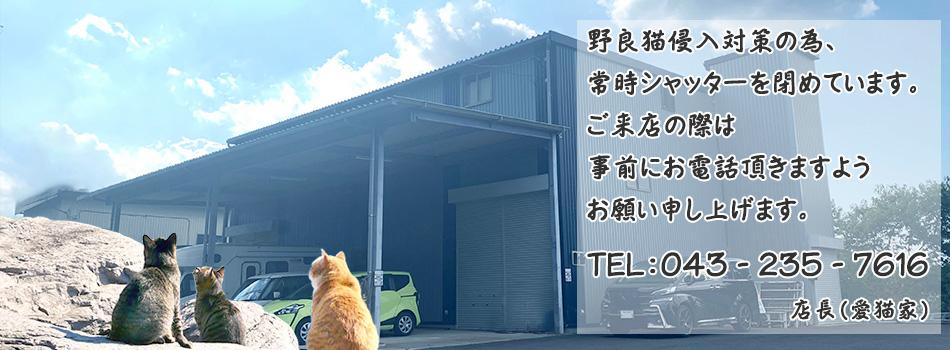 チェンエン・ジャパンのチェア/椅子